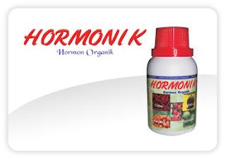 Hormon Organik