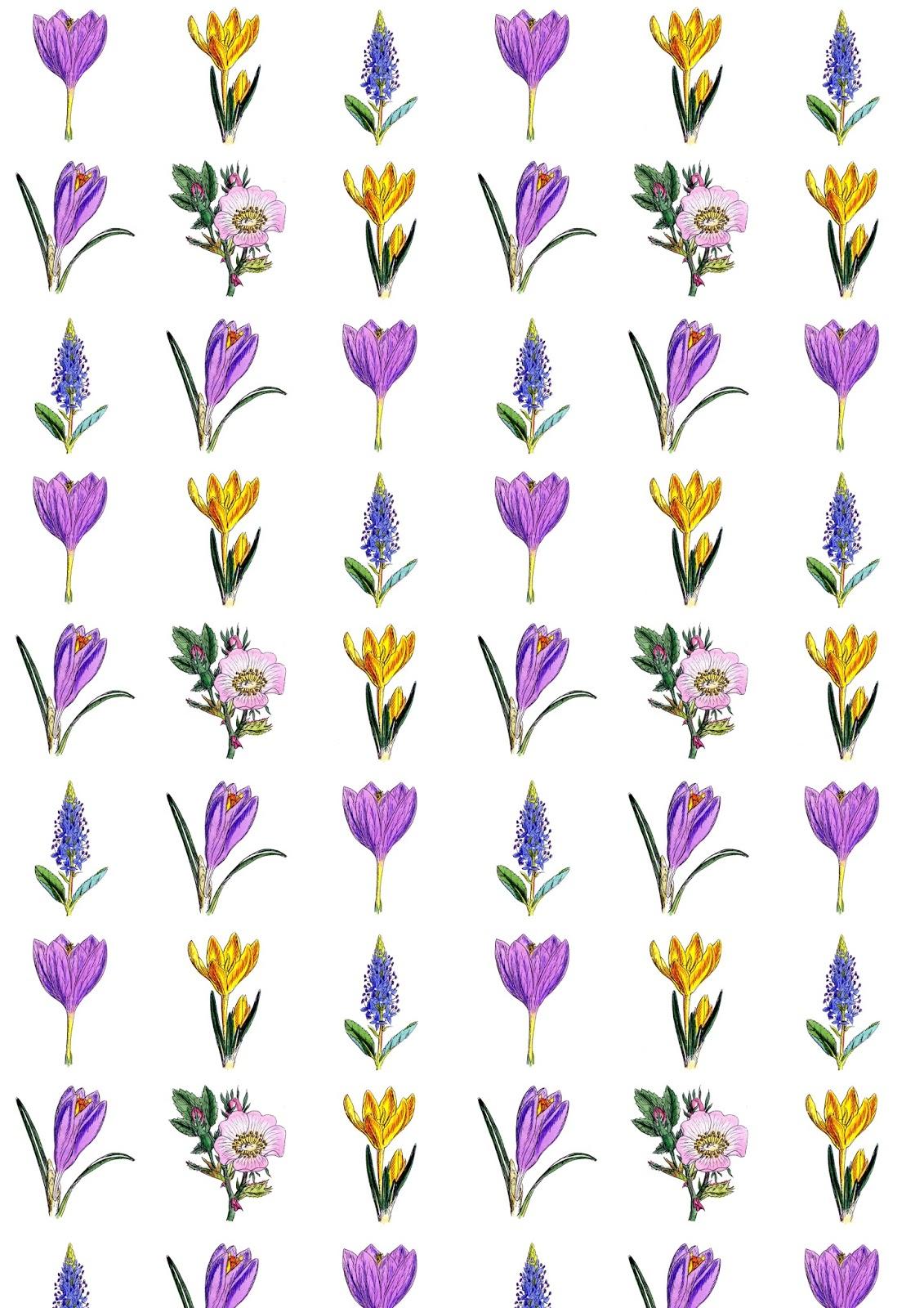 http://2.bp.blogspot.com/-YR-h4obtX60/VQM5o6ayFpI/AAAAAAAAiXY/cPiATLHa4-E/s1600/vintage_flower_paper_A4.jpg