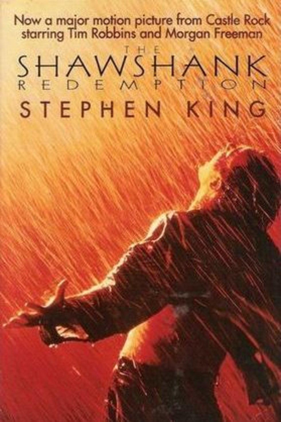 shawshank redemption essay hope king for a year rita hayworth and  king for a year rita hayworth and shawshank redemption reviewed rita hayworth and shawshank redemption reviewed shawshank redemption essays hope
