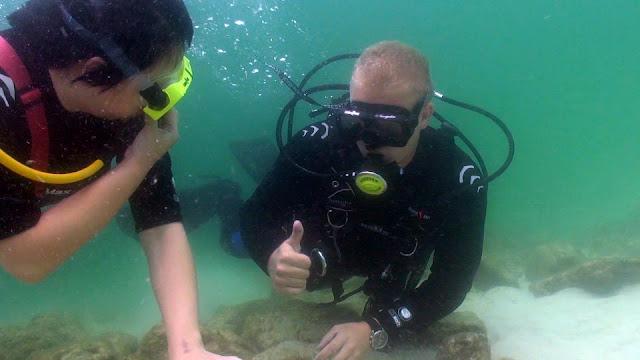 destin snorkel guide