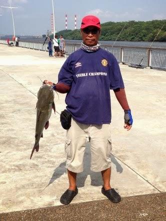 Big Catfish [Hexanematichthys], Seng Heurr 鲶鱼 [chinese] or Bulukang [malay] Caught by Sarawak At Woodland Jetty.