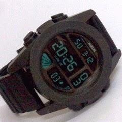 nixon the unit aril