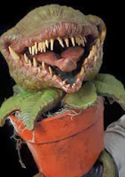http://www.thehorrordome.com/man-eating-plant-puppet-halloween-prop.aspx