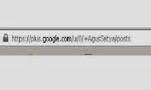 apa itu url khusus google plus