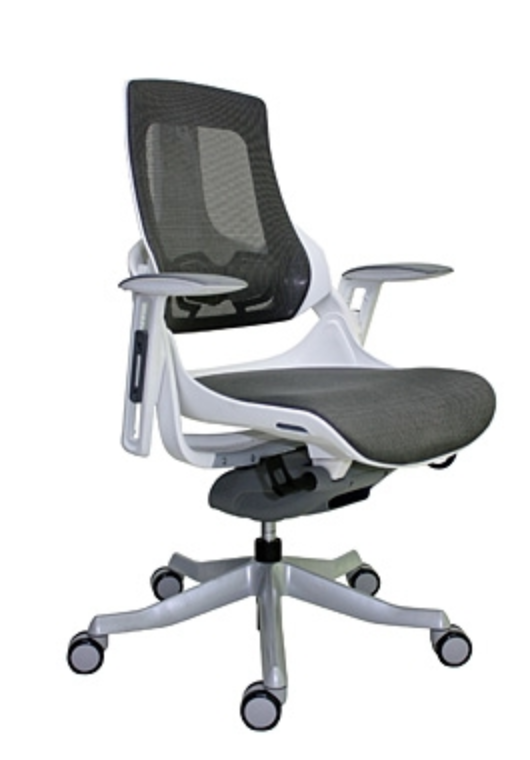 Eurotech Wau Mid Back Ergonomic Chair