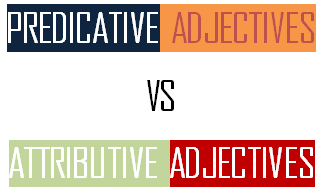 attributive dan predicative adjective