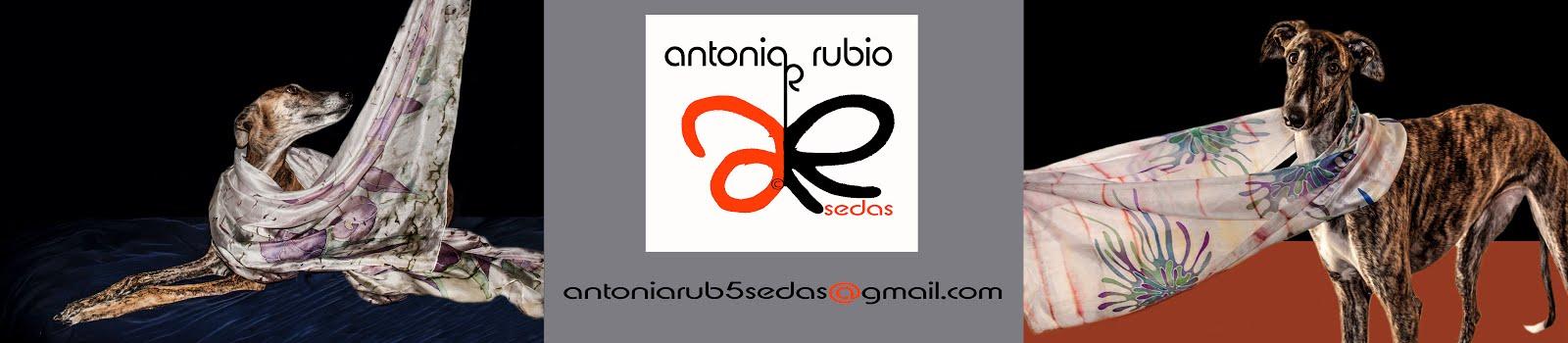 ANTONIA RUBIO ARTSEDAS