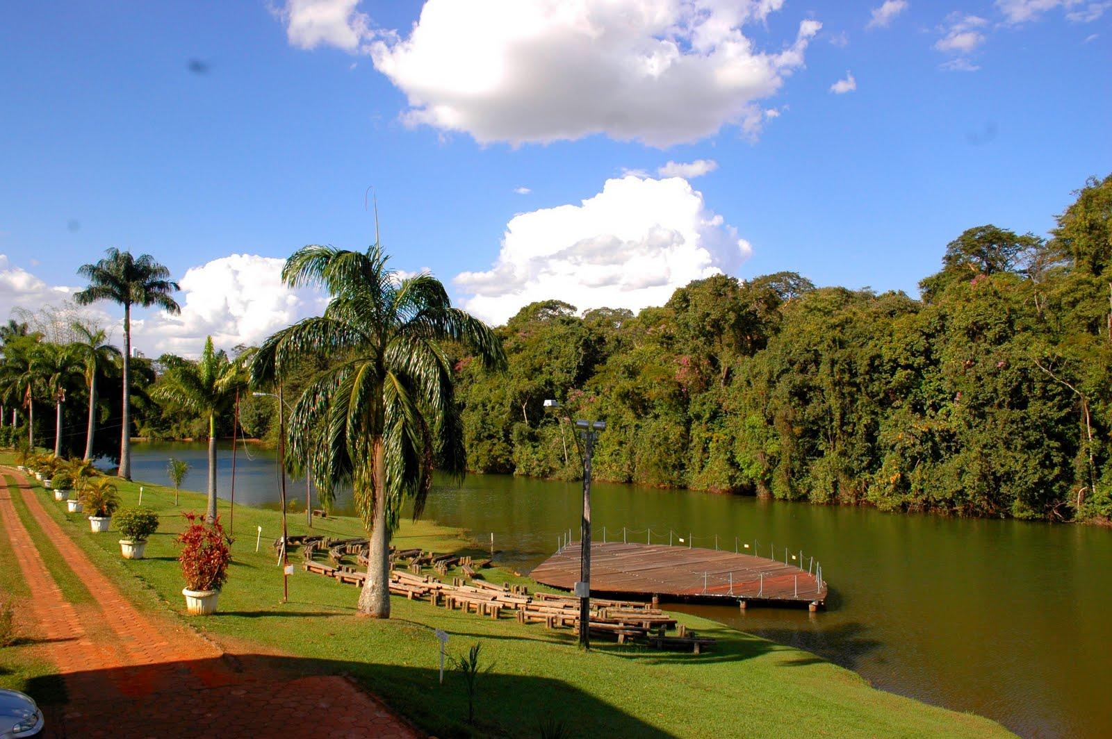 Adesivo Para Box De Banheiro ~ Boletim de Goiás Belezas de Goiás Jardim Bot u00e2nico de Goi u00e2nia