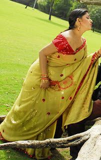 Meera-Jasmine-hot-in-saree-1