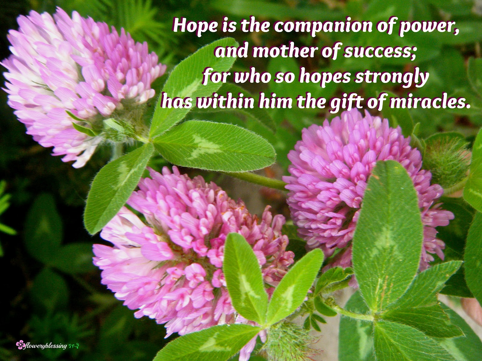 Flowery Blessing Hope is the panion of power and mother of success for