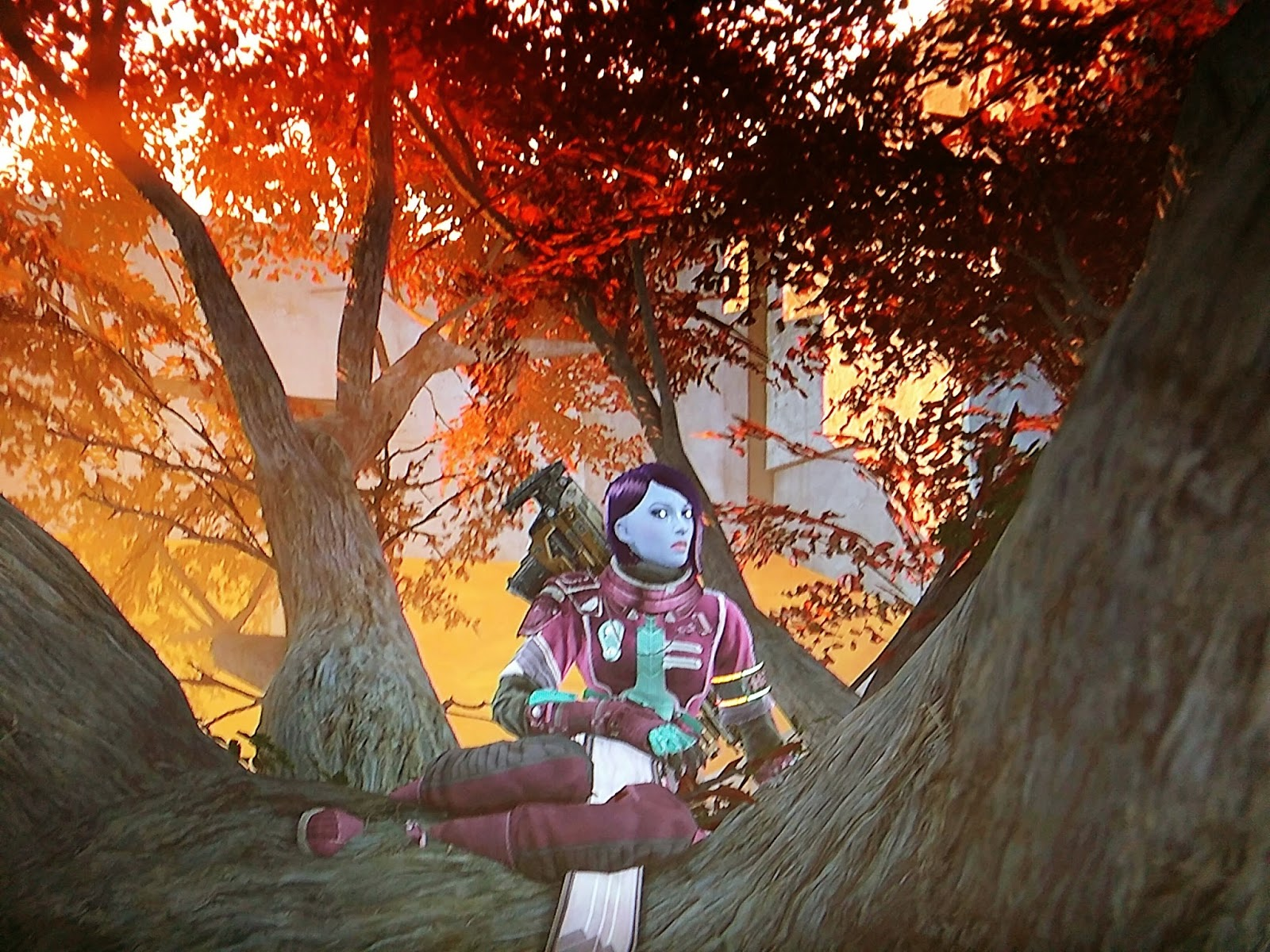 My character happily sitting in a tree at the Tower