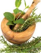 Informatii despre realizarea remediilor fitoterapeutice
