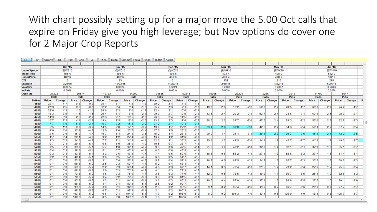 Options trading grain