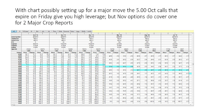 Grain options strategies