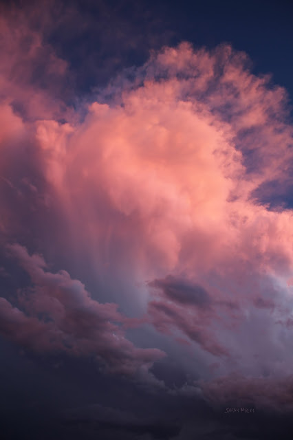 clouds, sky, photography, sarah myers, sunset, evening, desert, weather, majestic, twilight, digital, blue, orange, skies, photograph, beauty, large, vast, skyscape, landscape, cloudscape, vivid, autumn, fall, storm, thunder, cumulus, impressive, bright, night, Sonora, cold, glow, pink, aethereal, ethereal, dreams, coming, nighttime