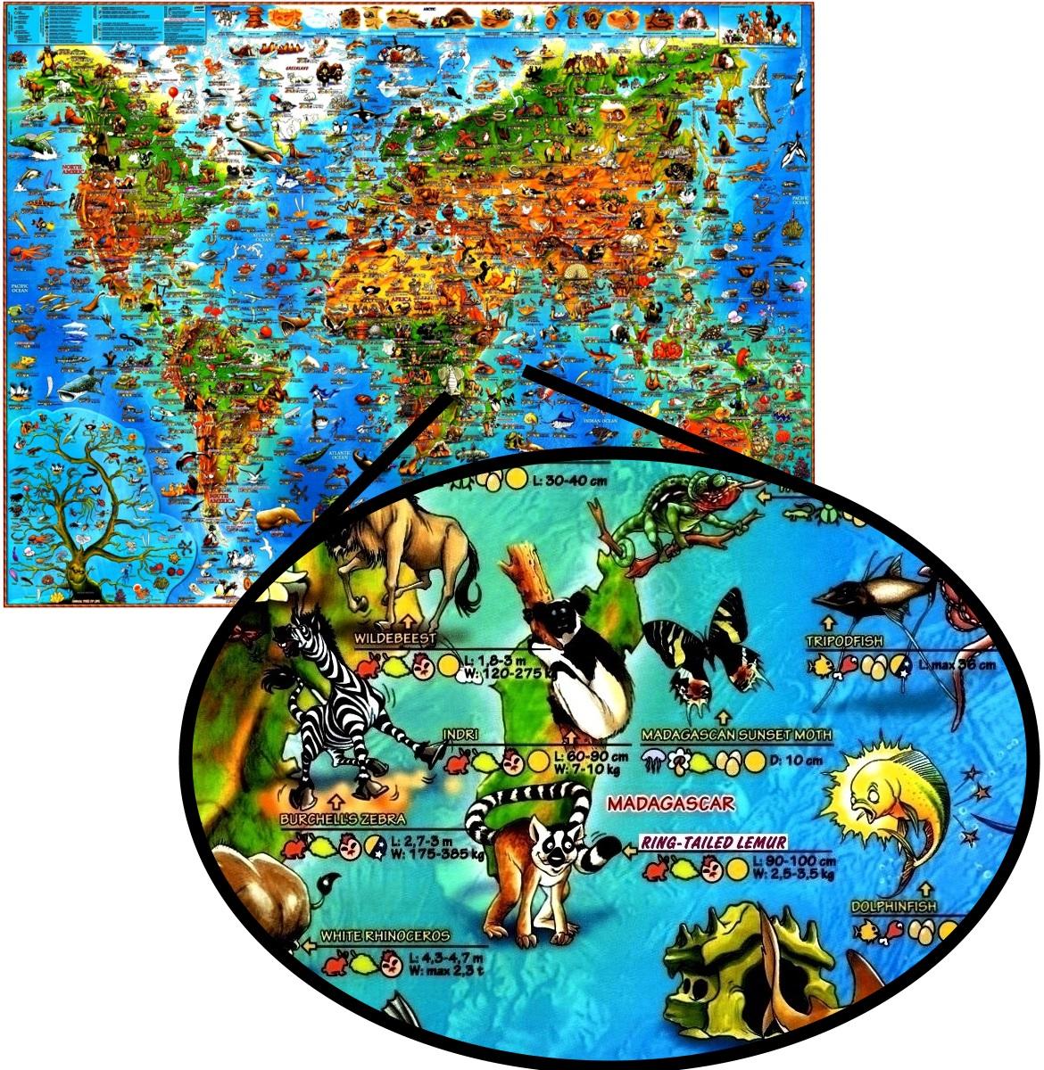 Mapa Mundi De Parede Do Mundo Papel Fotogrfico Decorao Hd  R