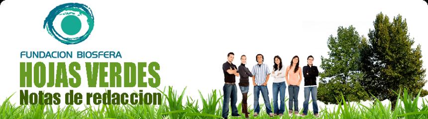 Hojas Verdes - Fundación Biosfera