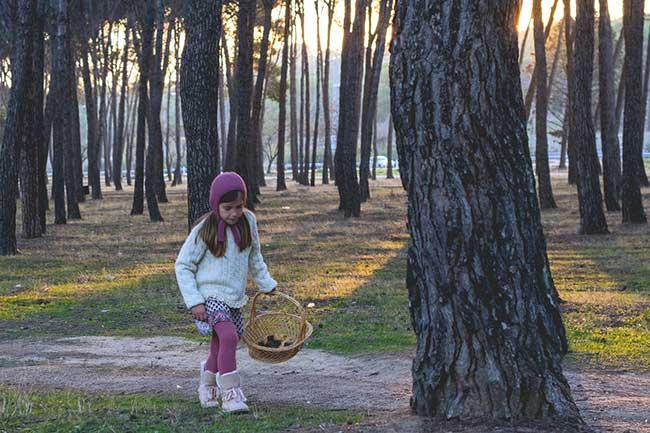 Fotografía: Paseos de invierno