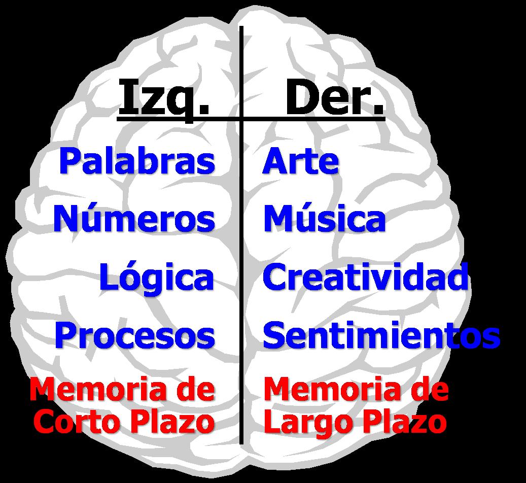 juego memoria corto plazo:
