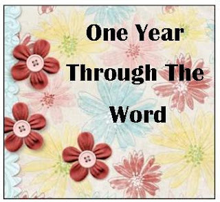 One Year Through The Word