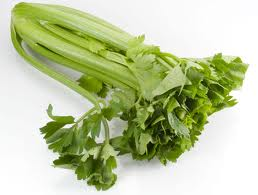 Celery can help human memory