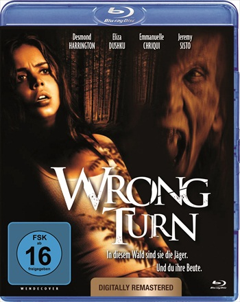 Wrong Turn 2003 Dual Audio Hindi 720p / 480p BRRip 700mb / 350mb