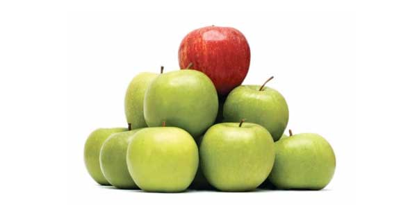 Marketing 101: The First Step of Market Differentiation ~ The ...