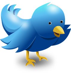 Tweet-tweet  follow