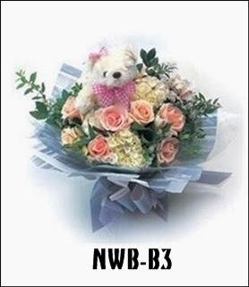 NWB-B3