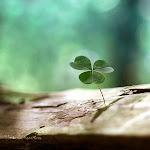 minha sorte vai mudar.................