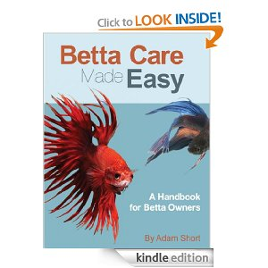Betta fish betta fish free how to care for betta fish book for Easy to take care of fish