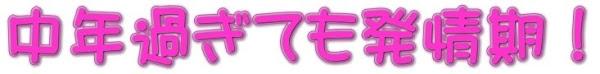 """中年過ぎても発情期・笑@優良出会い系サイト簡単""""攻略""""術!!"""