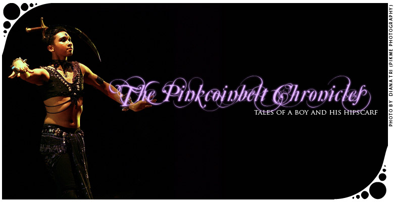 the pinkcoinbelt chronicles