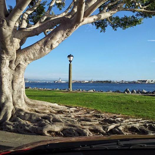 Harbor Island, San Diego, CA