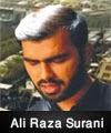 http://www.humaliwalayazadar.com/2015/04/ali-raza-surani-nohay-2013-to-2016.html