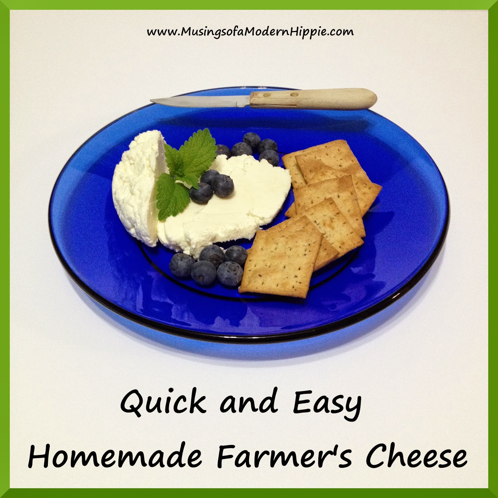Quick and Easy Homemade Cheese | Musings of a Modern Hippie