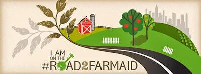 Farm Aid 2013 Photo, Willie Nelson