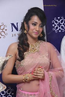 Trisha NAc jewellers