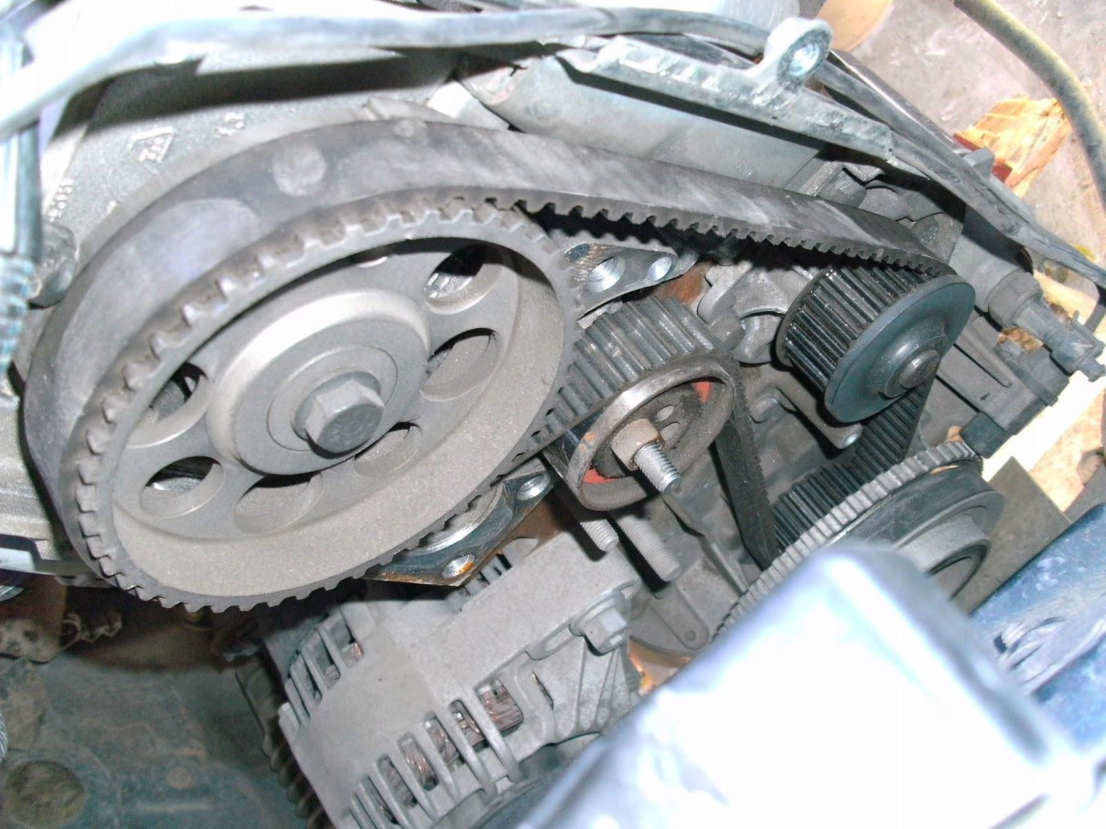 Suzuki Xalternator Cables