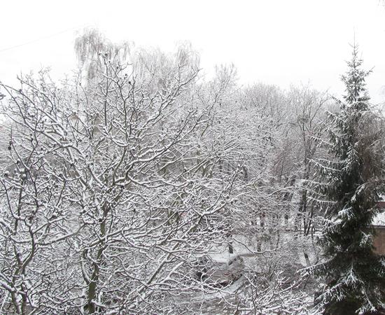 снег, snow