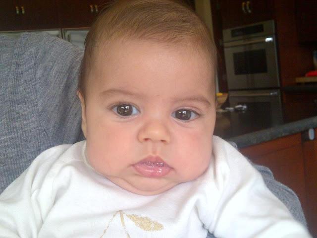 Milan Pique 4 month old