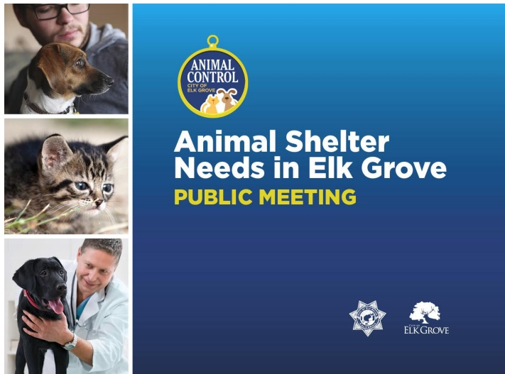 Elk Grove City Council to Discuss Proposed Animal Shelter Tomorrow Night