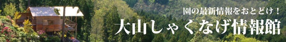 【大山しゃくなげ情報館】しゃくなげ園の最新情報をお届け!