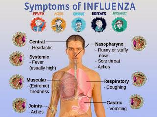 flu symptoms 2014