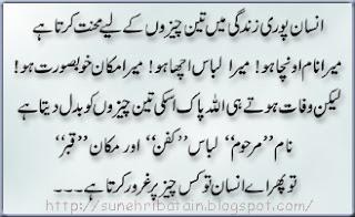 urdu sunehri batain, aqwale zareen, achi batein