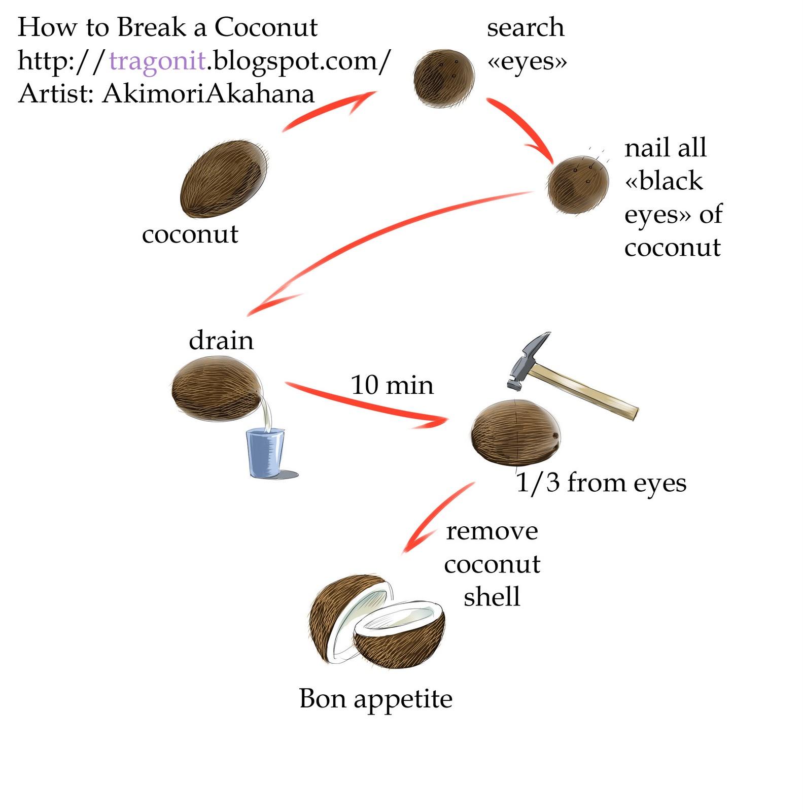 Как расколоть кокос в домашних условиях: инструкция 71