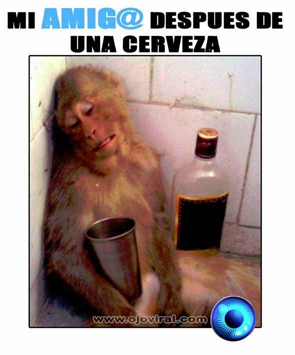 Mi amigo después de una cerveza