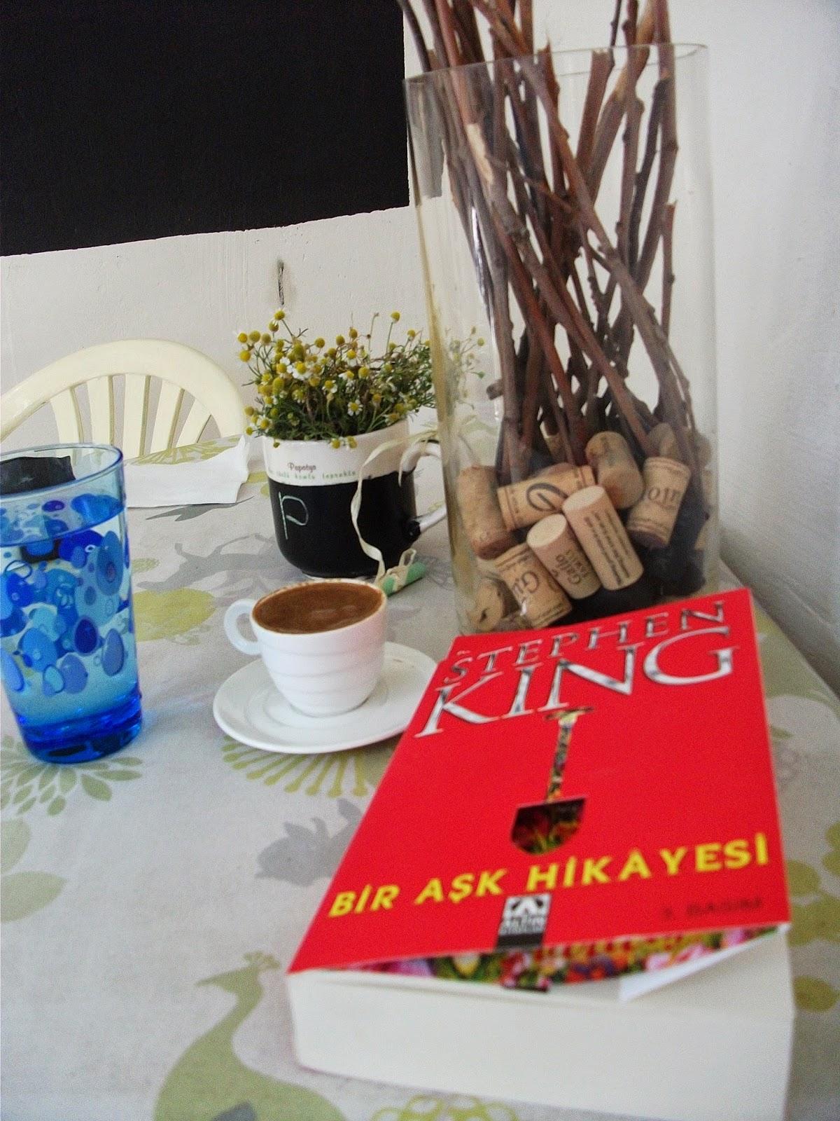 stephen king, bir aşk hikayesi,