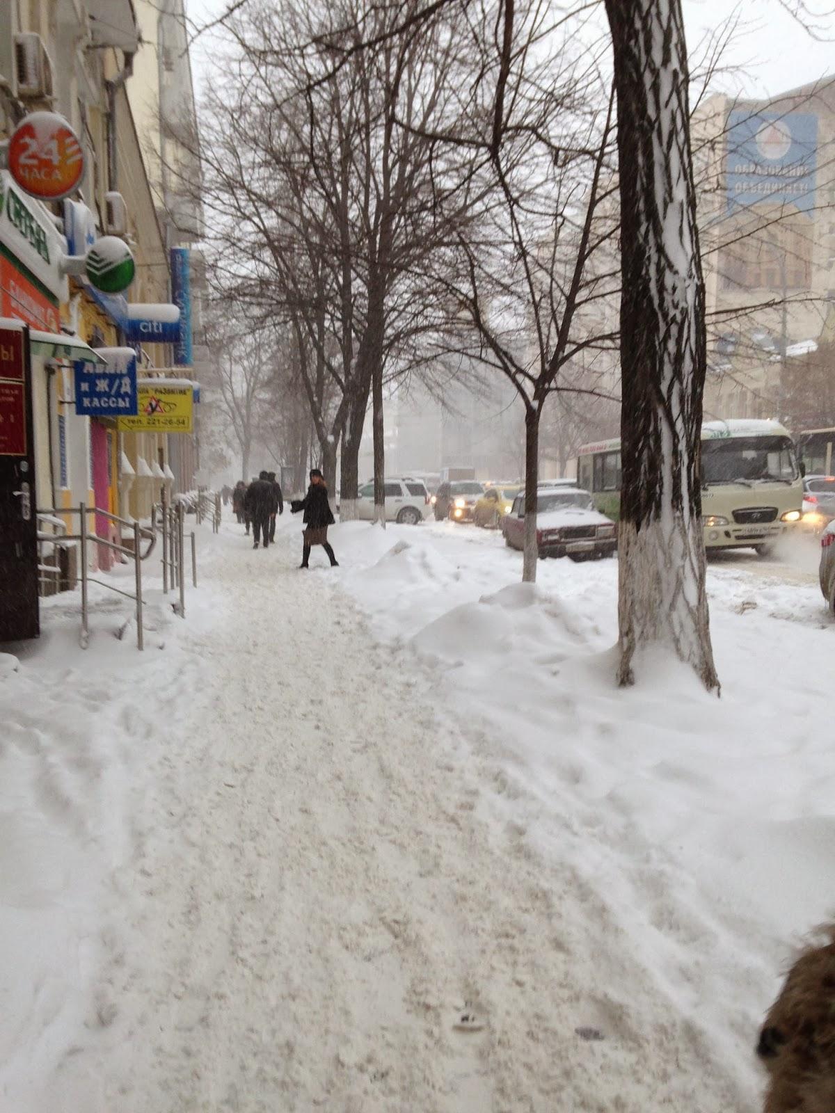 Большая Садовая Зимой (Ростов-на-Дону)
