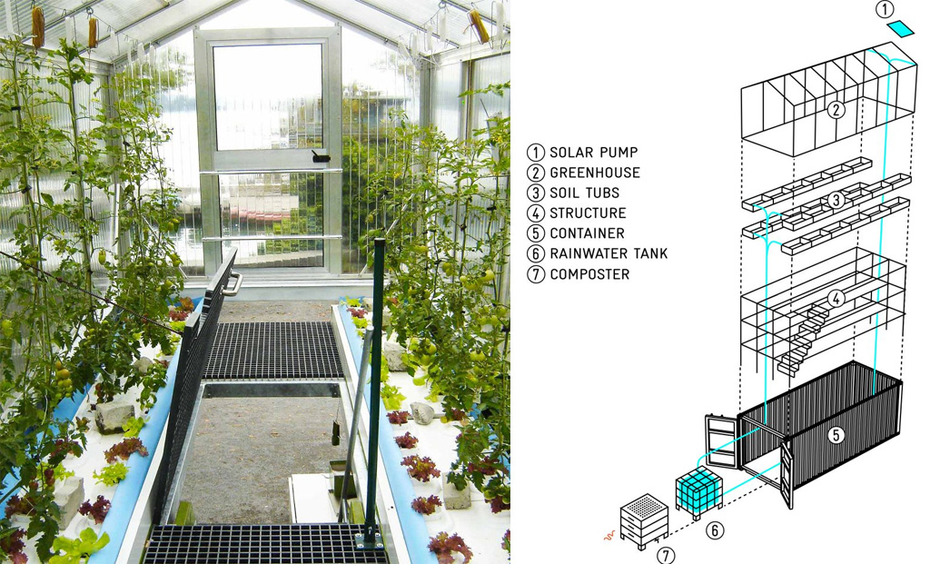 Urban farming unit study